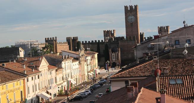 Progetto Assistenza Villafranca di Verona aderisce a Professione in Famiglia